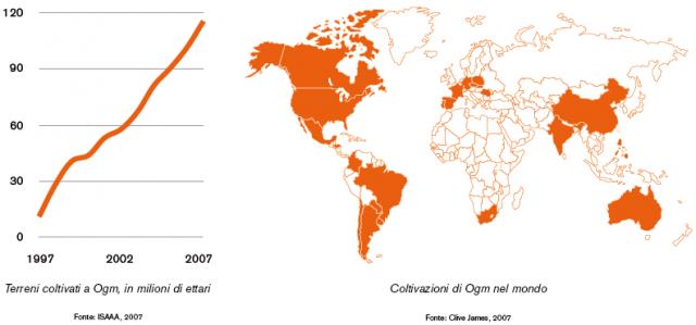 Ogm - Grafico